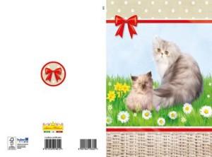 3272 auguri gatto small